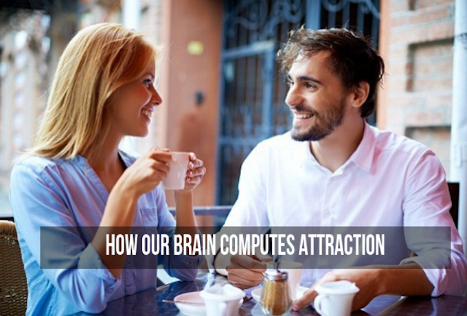 How-Our-Brain-Computes-Attraction